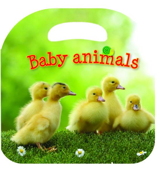 Animal board books